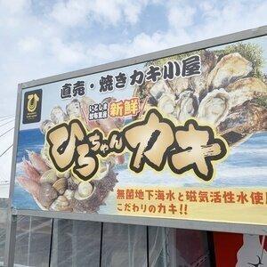 【糸島・加布里漁港の牡蠣小屋】ひろちゃんカキ 2021年冬期~貴重な国産の天然はまぐりを堪能する事ができます!