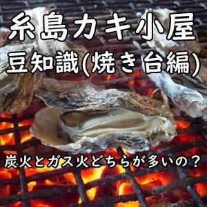 糸島のカキ小屋 炭火orガス 焼き台(火種)情報まとめ~風情を楽しむ炭火焼きor一定火力のガス焼き。どちらがお好み?